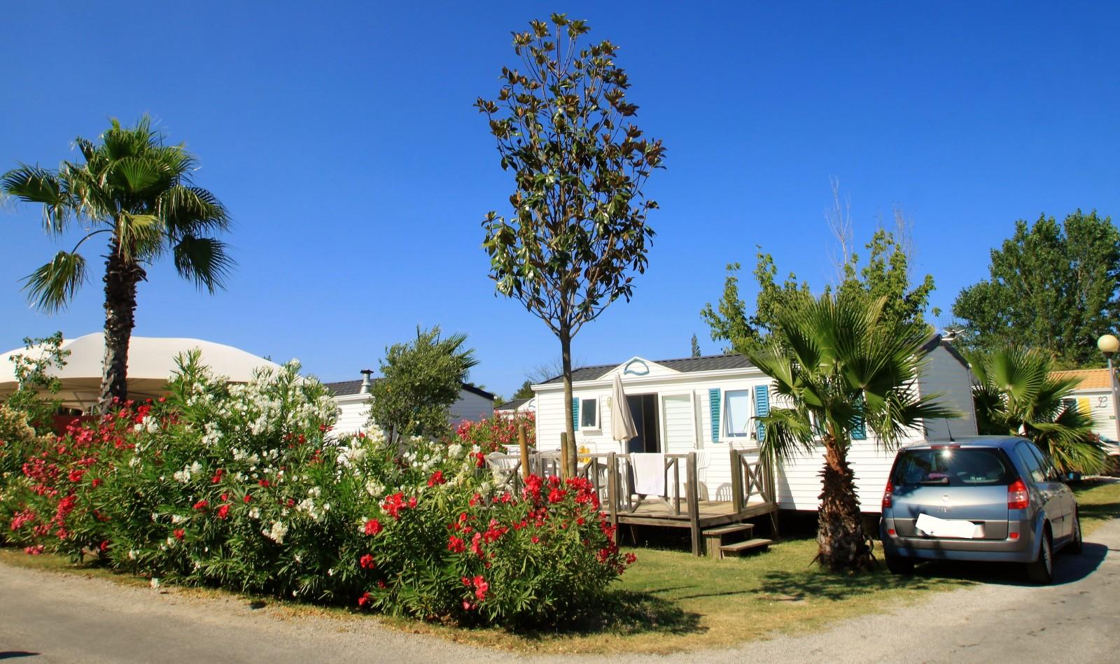 Camping Clos du Thym